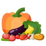 Fresh vegetable organic food set still life isolated on white background vector illustration. Royalty Free Stock Photography