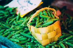 Fresh Vegetable Organic Green Beans In Decorative Wicker Basket. Production Of Local Food Market Royalty Free Stock Photography