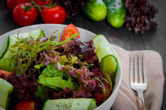 Fresh vegetable organic salad, healthy food. Fresh vegetable salad,healthy food, organic cucumbers, tomatoes and salad leaves Royalty Free Stock Photo