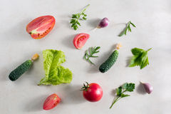 Fresh vegetable pattern Stock Image