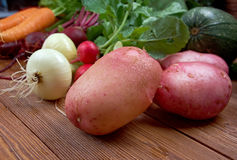 Fresh vegetable - potatoes close up. Fresh ingredients for cooking in rustic setting Royalty Free Stock Photos