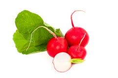 Fresh vegetable. Red radish on white background. Dieting stock images
