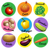 Fresh vegetable in round tags Stock Photos