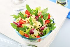Fresh vegetable salad. Mixed vegetable salad sprinkled with grated cheese Royalty Free Stock Photography