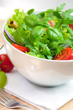 Fresh vegetable salad. Fresh salad in white bowl Royalty Free Stock Photos