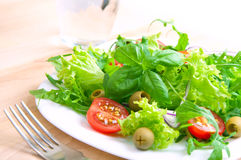 Fresh vegetable salad. Fresh salad on a white plate Royalty Free Stock Photo