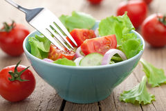 Fresh vegetable salad Stock Images