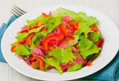 Fresh vegetable salad. On plate Stock Photography
