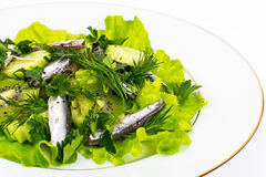 Fresh vegetable salad with anchovies. Studio Photo Stock Images