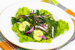 Fresh vegetable salad with anchovies. Studio Photo Stock Image