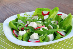 Fresh vegetable salad. With arugula, lettuce, red radish, chives and feta cheese in white plate Stock Images