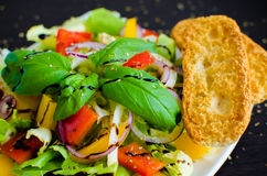 Fresh vegetable salad with bread Stock Images