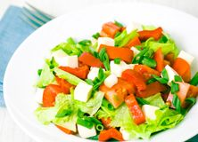 Fresh vegetable salad with cheese Royalty Free Stock Image