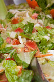 Fresh vegetable salad close-up Stock Image
