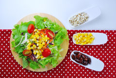 Fresh vegetable salad with corn,carrot,tomato,green oak,red oak, Royalty Free Stock Images