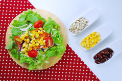 Fresh vegetable salad with corn,carrot,tomato,green oak, Stock Image