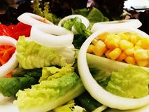 Fresh vegetable salad with corn and green vegetable royalty free stock image
