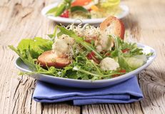 Fresh vegetable salad with crostini Stock Image