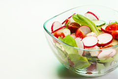Fresh vegetable salad with cucumber and radish. Fresh vegetable salad with cheese, cucumber and radish Royalty Free Stock Image