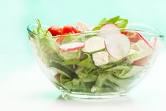Fresh vegetable salad with cucumber and radish. Fresh vegetable salad with cheese, cucumber and radish Royalty Free Stock Images