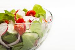 Fresh vegetable salad with cucumber and radish. Fresh vegetable salad with cheese, cucumber and radish Stock Photos