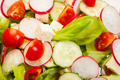 Fresh vegetable salad with cucumber and radish. Fresh vegetable salad with cheese, cucumber and radish Royalty Free Stock Photos