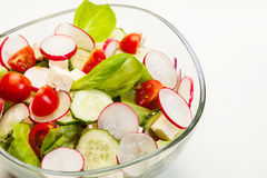 Fresh vegetable salad with cucumber and radish Stock Image