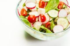 Fresh vegetable salad with cucumber and radish. Fresh vegetable salad with cheese, cucumber and radish Stock Photo