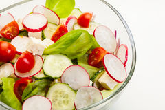 Fresh vegetable salad with cucumber and radish Stock Photos