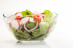 Fresh vegetable salad with cucumber and radish. Fresh vegetable salad with cheese, cucumber and radish Stock Images