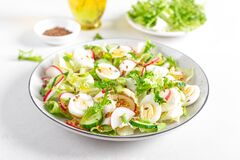 Fresh vegetable salad with cucumber, radish, lettuce and boiled eggs. Helathy food