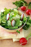 Fresh vegetable salad of cucumbers Stock Photography