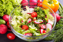 Fresh vegetable salad. Fresh salad of cucumbers, tomatoes, radishes and herbs in the transparent bowl Stock Photography
