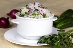 Fresh vegetable salad. Daikon salad with onion cucumber and parsley Stock Photography
