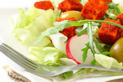 Fresh vegetable salad with diced cheese. Fresh vegetable salad with diced paprika-coated cheese Stock Photos