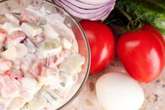 Fresh vegetable salad dressed with sour cream. Stock Image