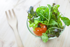 Fresh vegetable salad with green oak and tomato being prepared before cooking. (Shallow aperture intended for  the aesthetic quality of the blur Royalty Free Stock Photos