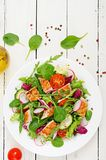 Fresh vegetable salad with grilled chicken breast - tomatoes, cucumbers, radish and mix lettuce leaves. Fresh vegetable salad with grilled chicken breast Stock Image