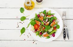Fresh vegetable salad with grilled chicken breast - tomatoes, cucumbers, radish and mix lettuce leaves. Fresh vegetable salad with grilled chicken breast Royalty Free Stock Photography