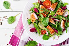 Fresh vegetable salad with grilled chicken breast - tomatoes, cucumbers, radish and mix lettuce leaves. Fresh vegetable salad with grilled chicken breast Stock Photos