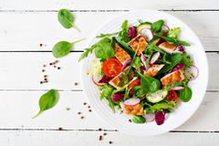 Fresh vegetable salad with grilled chicken breast - tomatoes, cucumbers, radish and mix lettuce leaves. Fresh vegetable salad with grilled chicken breast Stock Photo