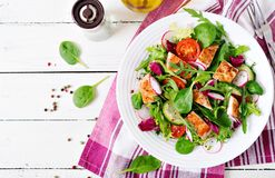 Fresh vegetable salad with grilled chicken breast - tomatoes, cucumbers, radish and mix lettuce leaves. Fresh vegetable salad with grilled chicken breast Royalty Free Stock Images