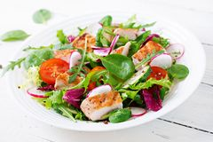 Fresh vegetable salad with grilled chicken breast - tomatoes, cucumbers, radish and mix lettuce leaves. Fresh vegetable salad with grilled chicken breast Royalty Free Stock Image