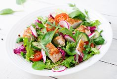 Fresh vegetable salad with grilled chicken breast - tomatoes, cucumbers, radish and mix lettuce leaves. Fresh vegetable salad with grilled chicken breast Royalty Free Stock Photo