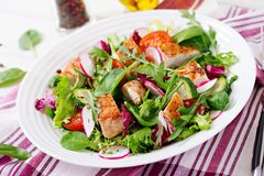 Fresh vegetable salad with grilled chicken breast - tomatoes, cucumbers, radish and mix lettuce leaves. Chicken salad. Healthy food Stock Photography