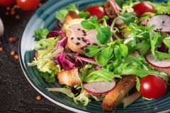 Fresh vegetable salad with grilled chicken breast - tomatoes, radish and mix lettuce leaves. Chicken salad. Healthy food. Black ba. Ckground. Top view Royalty Free Stock Photos