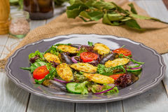 Fresh vegetable salad, healthy food, organic cucumbers,nmussels, tomatoes and salad leaves Royalty Free Stock Photos