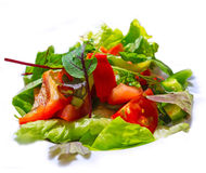 Fresh vegetable salad Stock Image