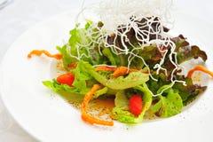 Fresh vegetable salad isolated Royalty Free Stock Image