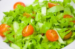 Fresh vegetable salad with lettuce, tomato and cucumber Royalty Free Stock Photos
